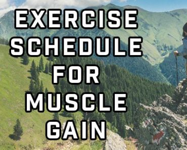 Exercise Schedule For Muscle Gain